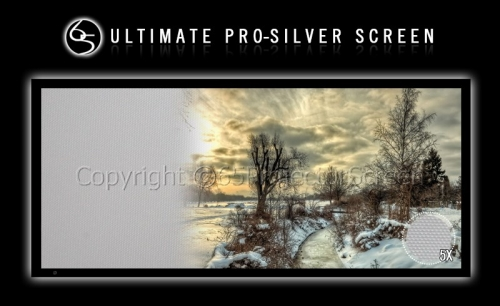 Silver Screen_1 (Copy)